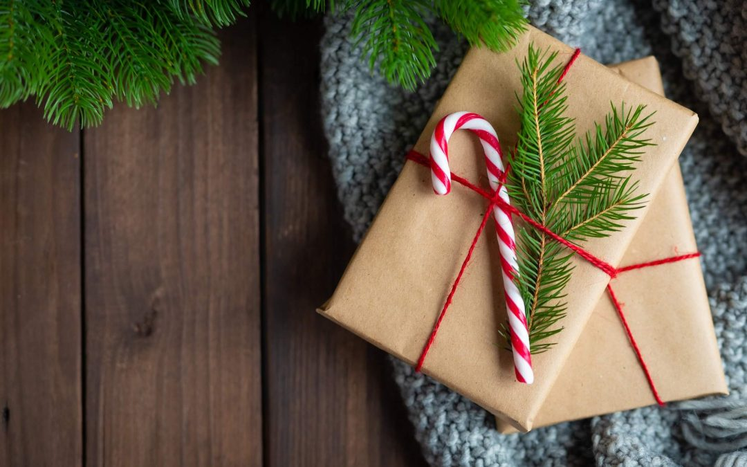 5 Sensible Christmas Presents for a Pest-Free Home