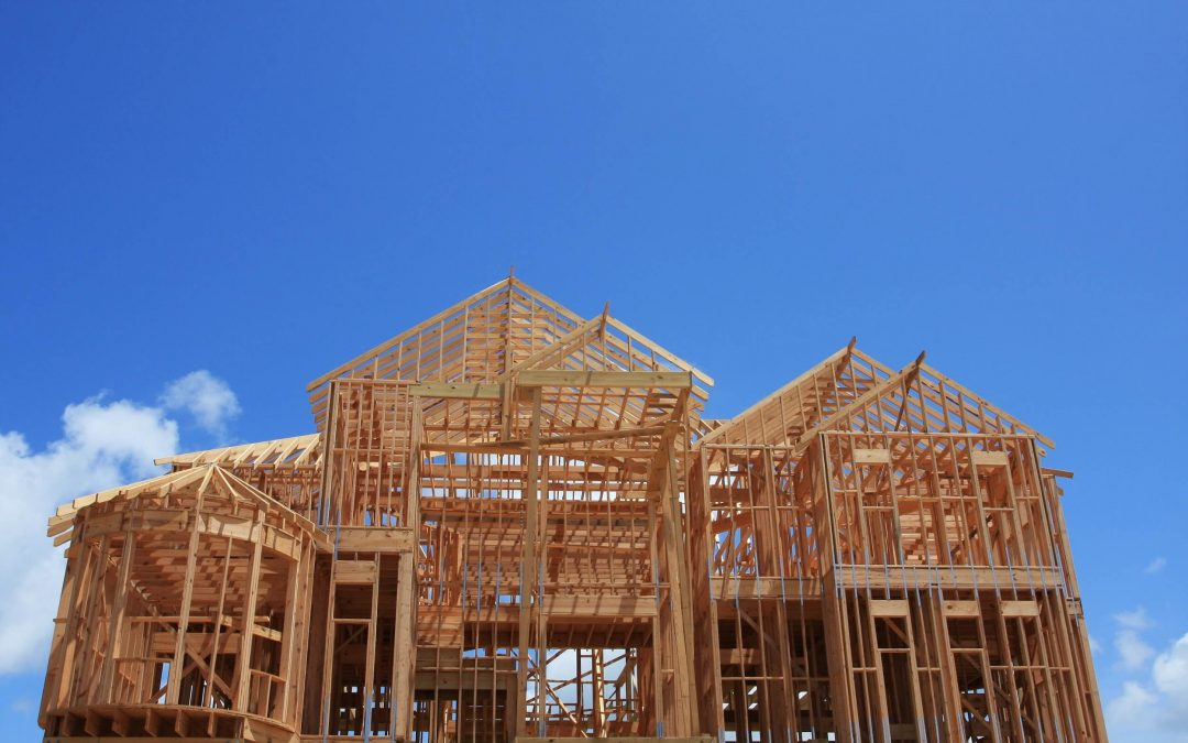 Don't Build Your New Home Without Pest Control in Place