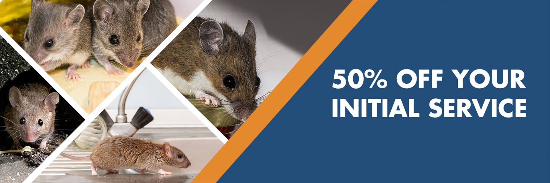H2 Pest Control coupon for 50% off initial rodent and pest control service in Lehi and Eagle Mountain UT